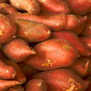 Sweet potato Facts, Health Benefits and Nutritional Value