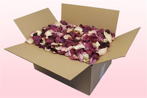 modern for sale cheap freeze dried petals confetti and preserved roses