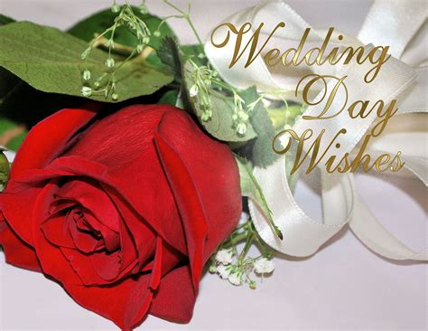 anniversary greeting cards wedding