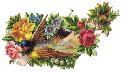 birds  floral vintage clip art images knick  time