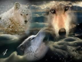 Oule Pour Le Loupe De Bureau by Fonds D 233 Cran Animaux Gt Fonds D 233 Cran Loups Loups Powaa