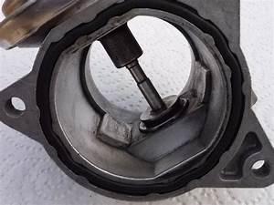 Diesel Excellium : nettoyage vanne egr seat forum marques ~ Gottalentnigeria.com Avis de Voitures