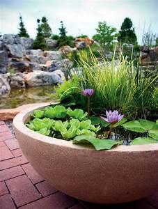 Creating a mini pond a small oasis on the balcony for Jardiner conseils patio balcon jardin aquatique