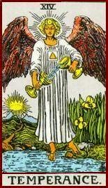 seventy  degrees  wisdom  book  tarot  rachel