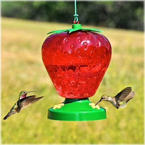 pet hummingbird for pet 174 plastic strawberry hummingbird feeder 1650