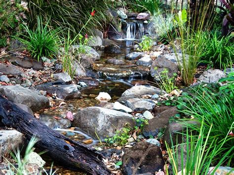 waterscapes australia streams ponds and natural