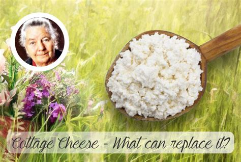Cottage Cheese Diet What Can Replace Dr Budwig S Cottage Cheese And Linseed
