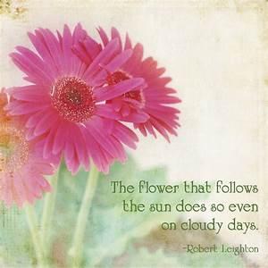 Pretty Flower Quotes. QuotesGram