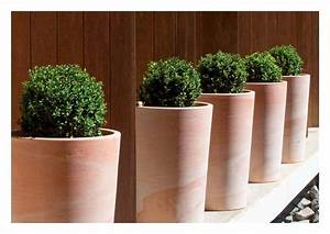 Pots En Terre Cuite Carrefour : des pots design en terre cuite my little jardin my ~ Dailycaller-alerts.com Idées de Décoration