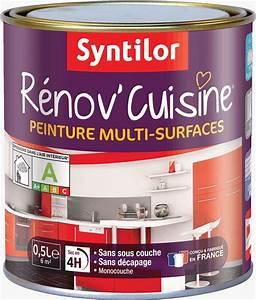 Peinture Pour Renover Les Meubles De Cuisine : r nov cuisine peinture meubles de cuisine et multi ~ Premium-room.com Idées de Décoration