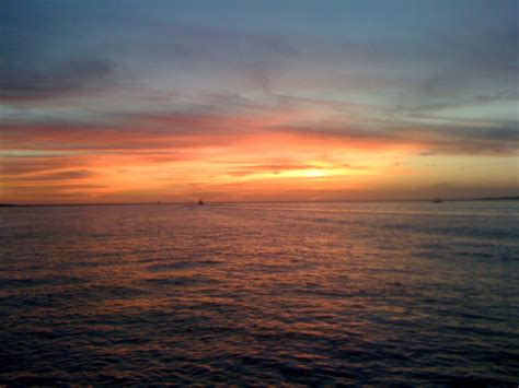 Everglades Boat Tours Near Fort Myers by Fort Myers Dolphin Cruise And And Sunset Cruise
