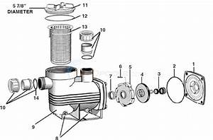 Waterco Supamite Pump Parts