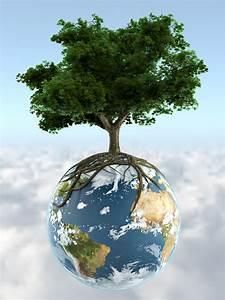 tree on planet earth stock illustration illustration of