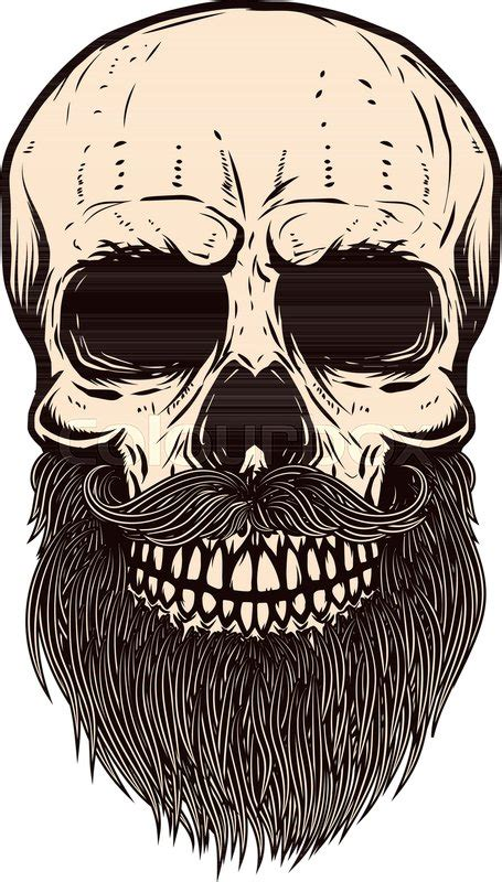 bearded skull illustration  white stock vector