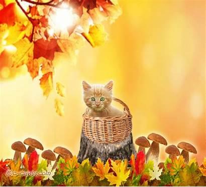Autumn Thanks Say Thank Fall Cards Card