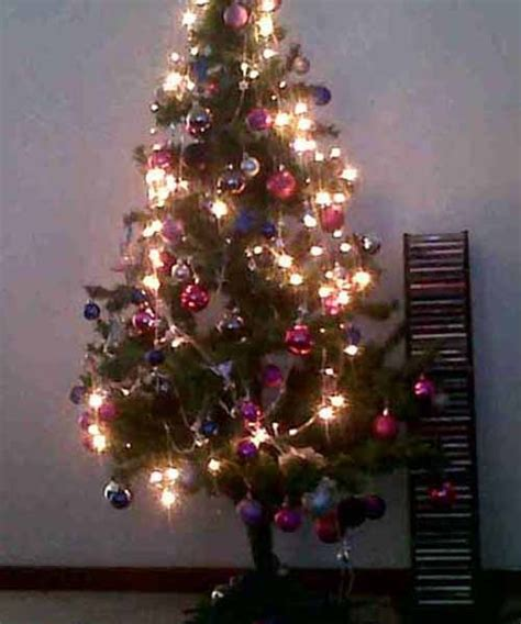 37 best images about magical christmas trees on pinterest
