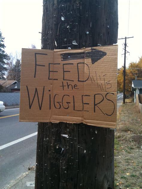 wiggler wigglers feed campaign