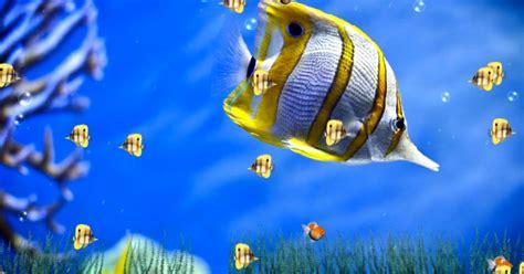 Animated Aquarium Wallpaper For Windows 7 Free - animated aquarium wallpaper free for windows 7