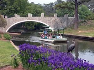 Norfolk botanical garden for Virginia botanical gardens
