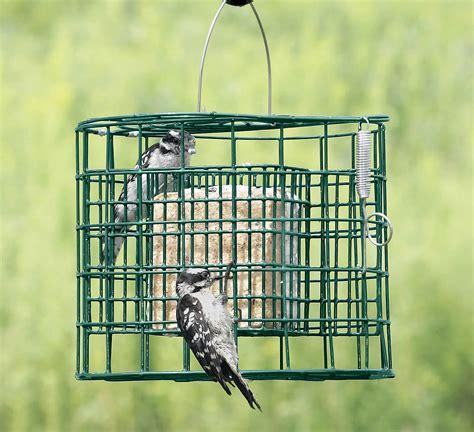 duncraft com duncraft 2692 suet sanctuary bird feeder