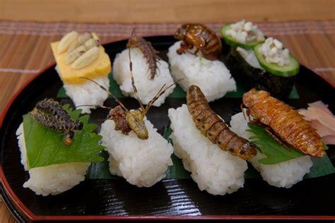 cuisine insectes comestibles liste des insectes comestibles insectes comestibles