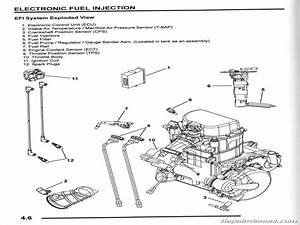 Polaris 800 Atv Wiring Diagram  Wiring  Wiring Diagram Images