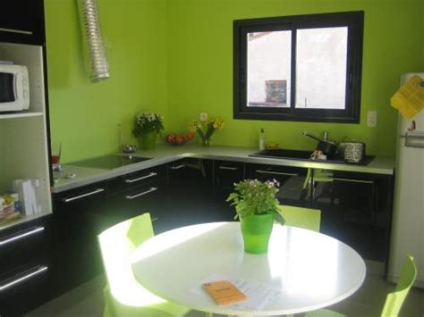 cuisine verte et grise photo decoration cuisine verte et 9 jpg