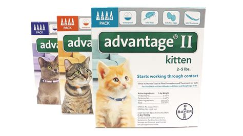 Advantage Ii For Cats Dosage Fleascience