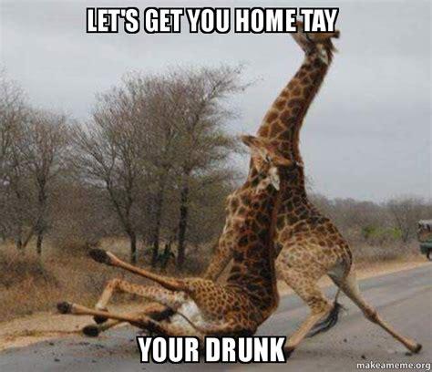 Drunk Giraffe Meme - let s get you home tay your drunk make a meme