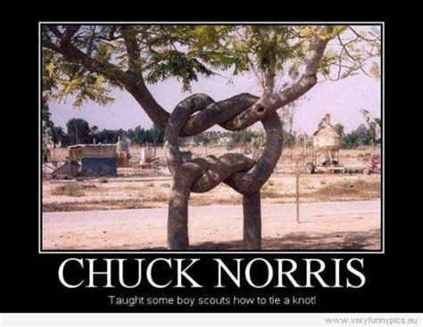 Funny Chuck Norris Memes - pinterest the world s catalog of ideas