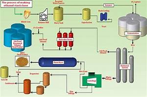 The Process Of Ethanol Production
