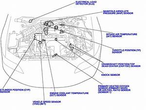 95 Honda Accord Lx Engine Diagram