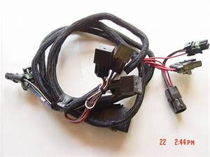 69793 11 Pin Light Wiring Harness Adapter Western Fisher