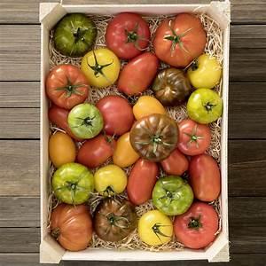 Bio Saatgut Kaufen : saatgut holzbox tomaten 7 bio saatgut sorten online kaufen bei g rtner p tschke ~ A.2002-acura-tl-radio.info Haus und Dekorationen