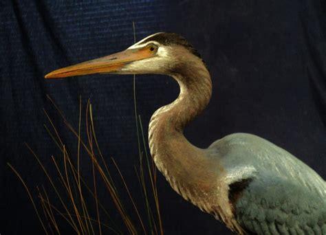 Artist Heron Sculptures And Pelican Art Sculptures Water
