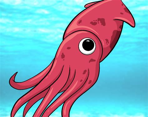 draw  squid draw central