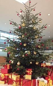Weihnachtsbaum Pink Geschmückt : dekorationen f r ihre weihnachtsfeier weihnachtsbaum deko ~ Orissabook.com Haus und Dekorationen