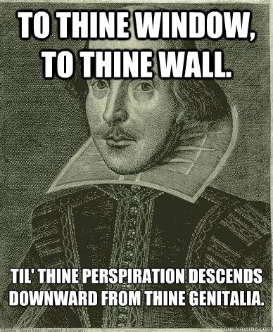 To The Window To The Wall Meme - to thine window to thine wall til thine perspiration descends downward from thine genitalia