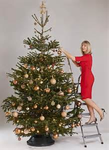 what your christmas tree decorations reveal about you