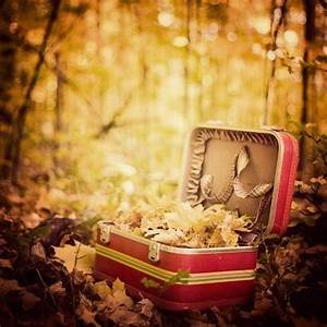 Vintage Red Suitcase, Fall Photography, Yellow Leaves ...