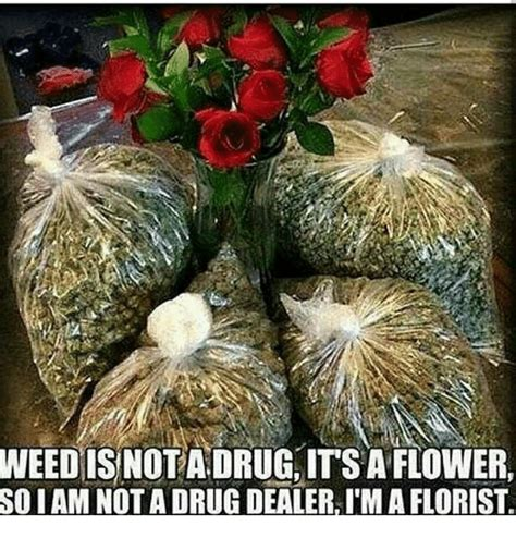 Flower Memes - weedis nota drug its a flower iam not a drug dealer i m a florist so drug dealer meme on me me