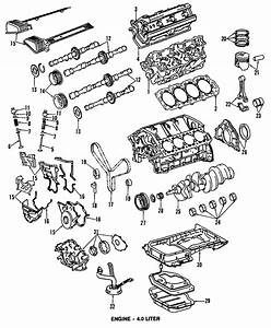 1994 Lexus Ls400 Engine Timing Cover  Front  Lower