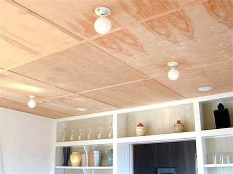 25+ Best Cheap Ceiling Ideas On Pinterest  Cheap Home