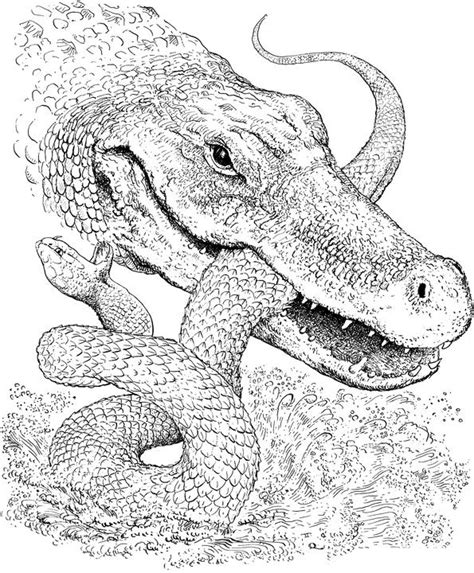 HD wallpapers snake coloring pages