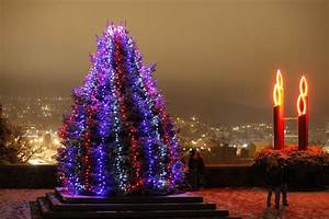 A Guide to Tree Lighting Celebrations in Lehigh Valley