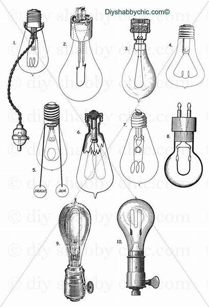 Bulb Drawing Industrial Transfer Furniture Glass Bulbs