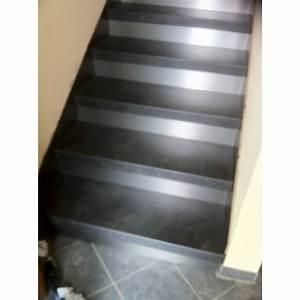 Habillage Escalier Interieur : recouvrement escalier b ton ardoise 74800 la roche sur foron ~ Premium-room.com Idées de Décoration