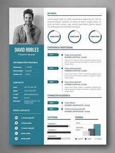 examples of resume qualifications mejores plantillas curriculum infografia word vigo