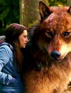 Bella & Jacob -- Eclipse Who else wants to pet Jacob as a ...