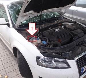 Location Audi A3 : audi a3 2008 2009 najdi ~ Medecine-chirurgie-esthetiques.com Avis de Voitures